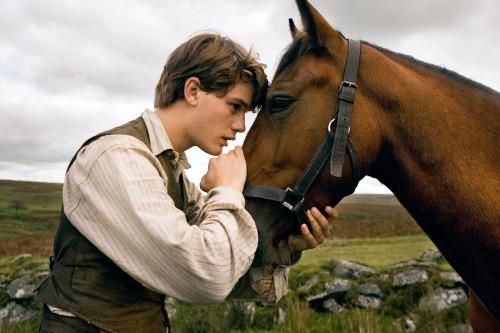 0006-war_horse_06