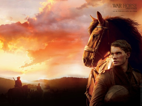 0013-war-horse-dl-wallpaper-1600x1200-1