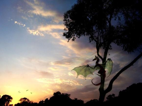 Dragones al amanecer