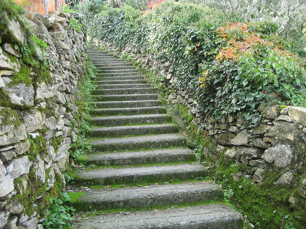 Escaleras interiores de casas abandonados y otros for Escaleras bonitas