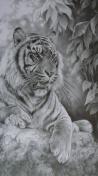 tigerrock
