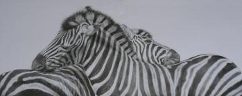 zebratogethersm