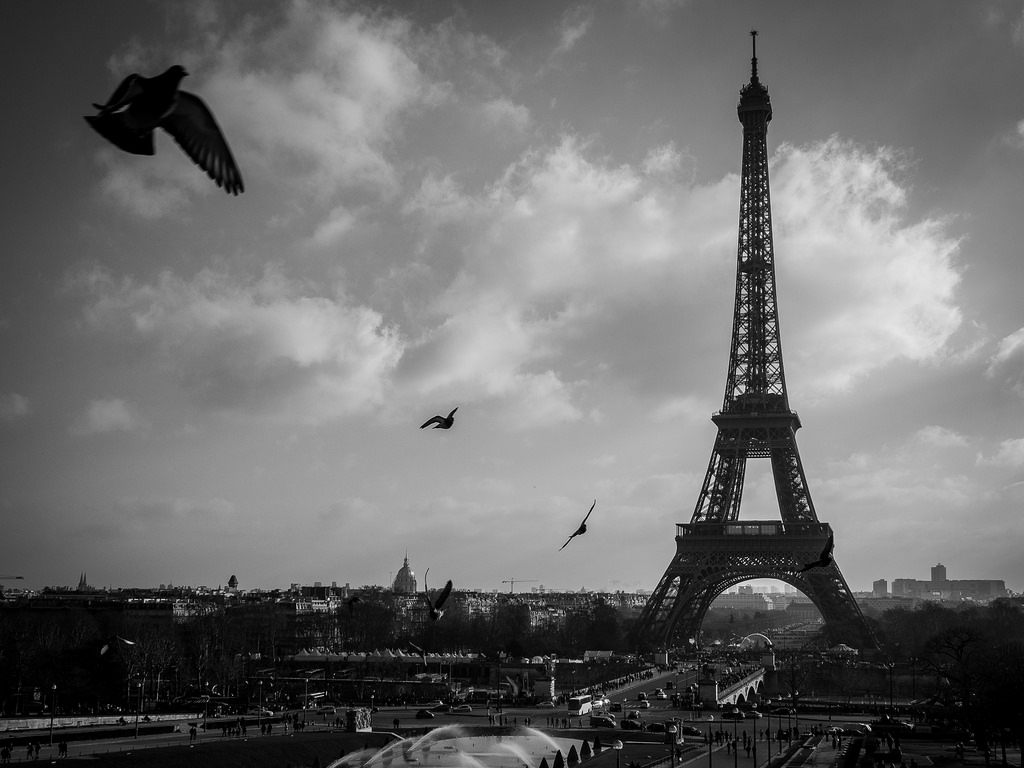------* SIEMPRE NOS QUEDARA PARIS *------ - Página 6 15708985854_0a68c1132f_b